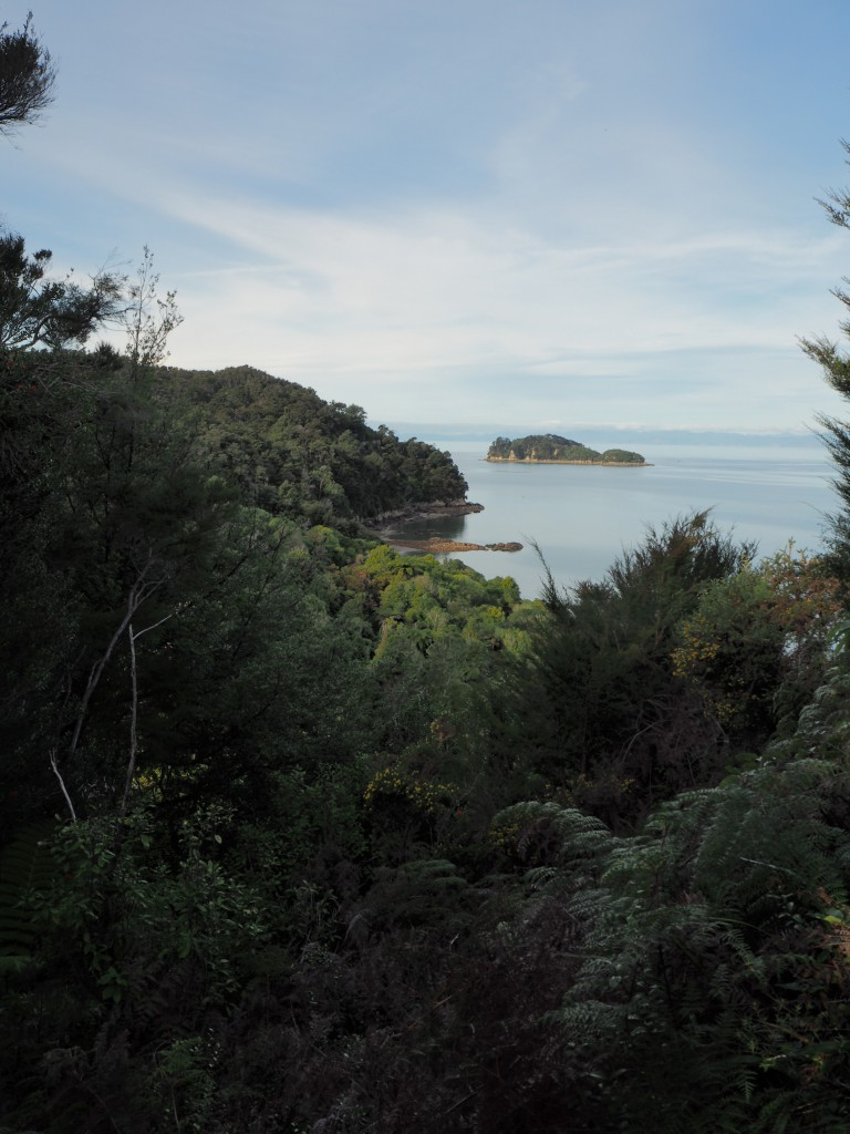 The view of Abel Tasmin on the 3 hour walk back from Anchorage