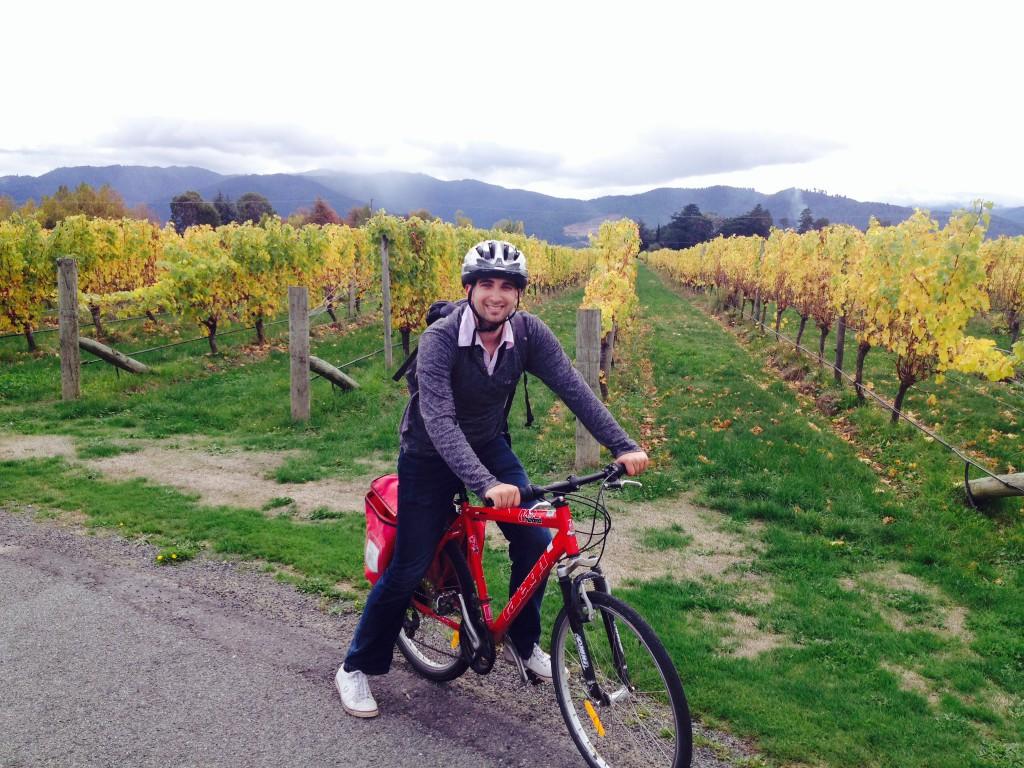 The Cloudy Bay vineyard