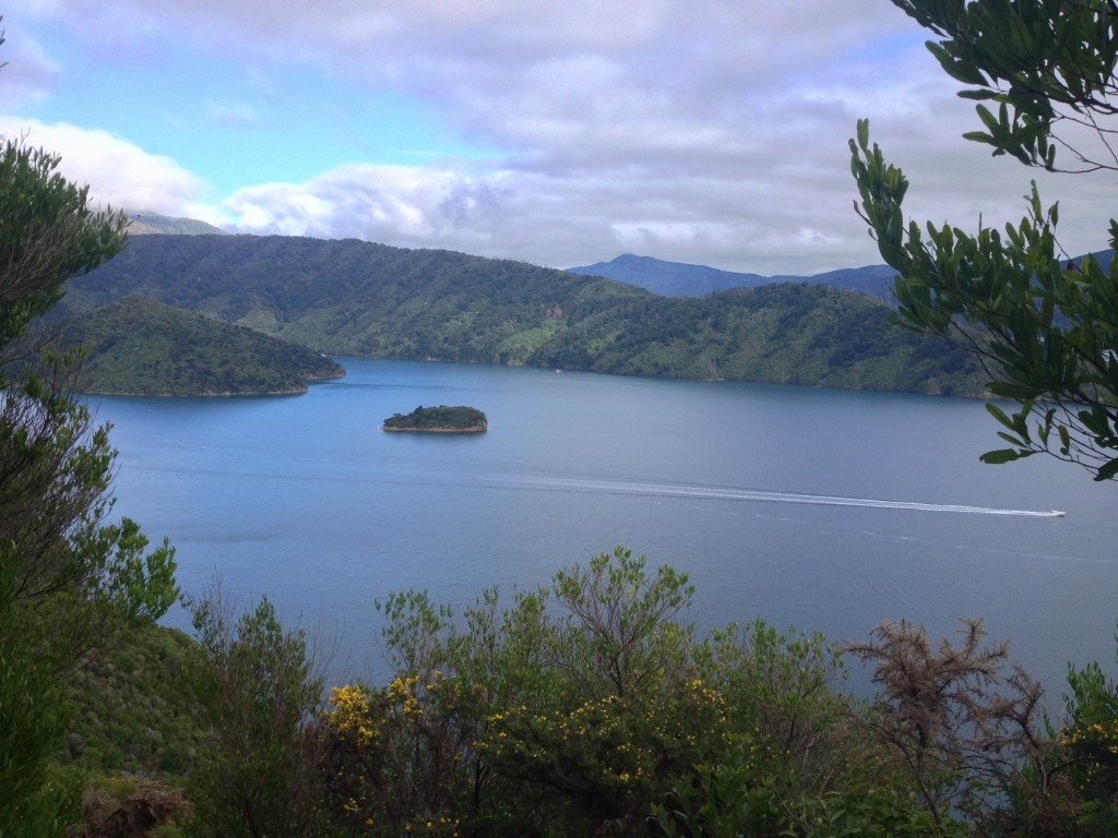 The view of Marlborough Sound from The Snout