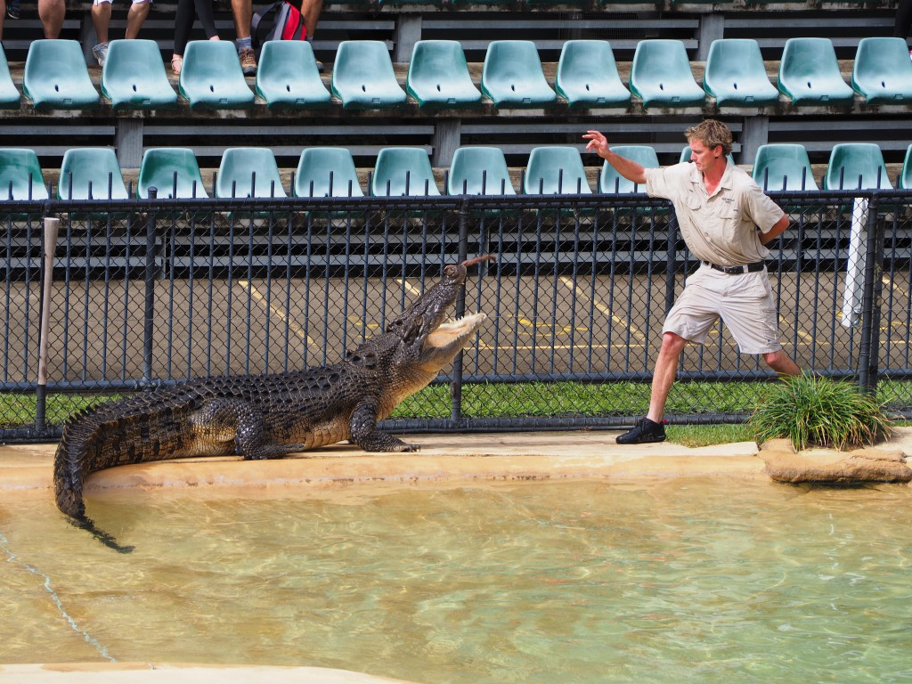 Crocoseum at Australia Zoo
