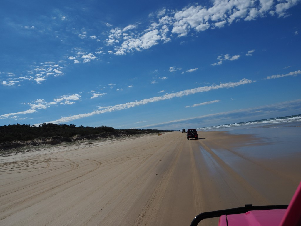 A typical view from the jeep on Fraser Island