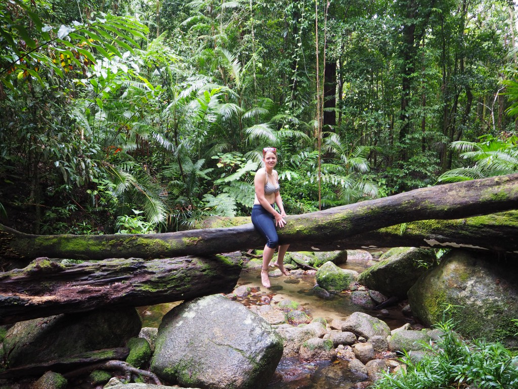 Trekking in Mossman Gorge
