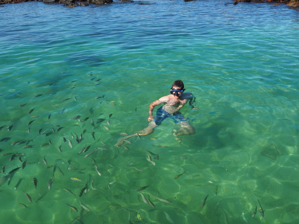 Swimming with tropical fish in the Brazilian waters