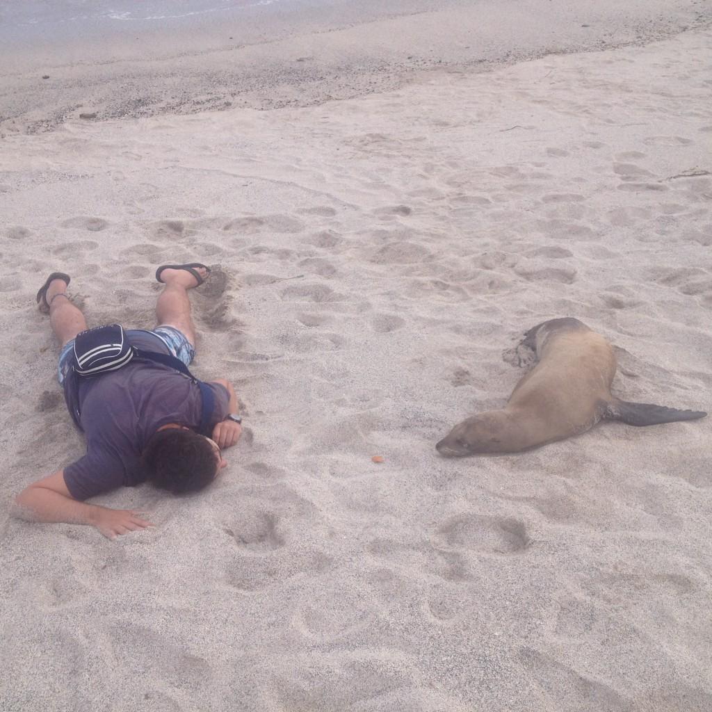 Imitating a particularly sociable sea lion at La Loberia