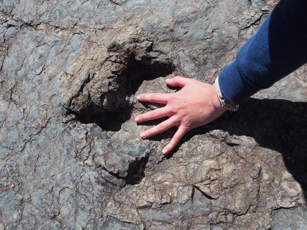 Hats' hand in a dinosaur footprint! Over 65 million years old!