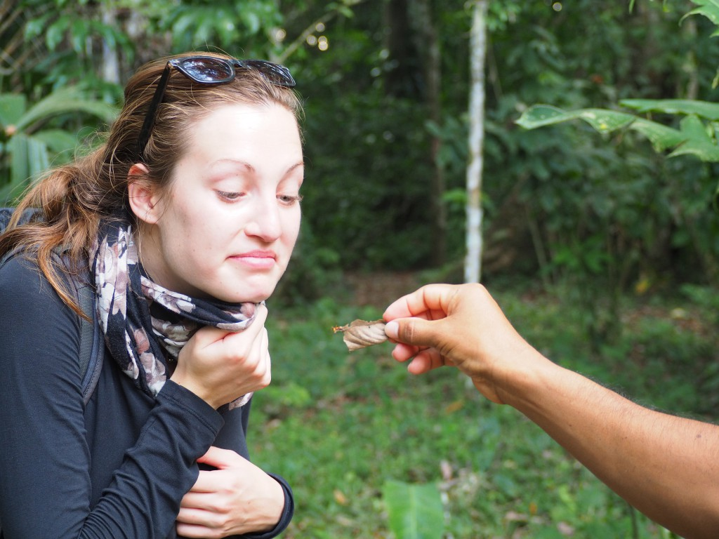 The guide asked Hat to smell the pheromones that a leaf cutter ant was letting off
