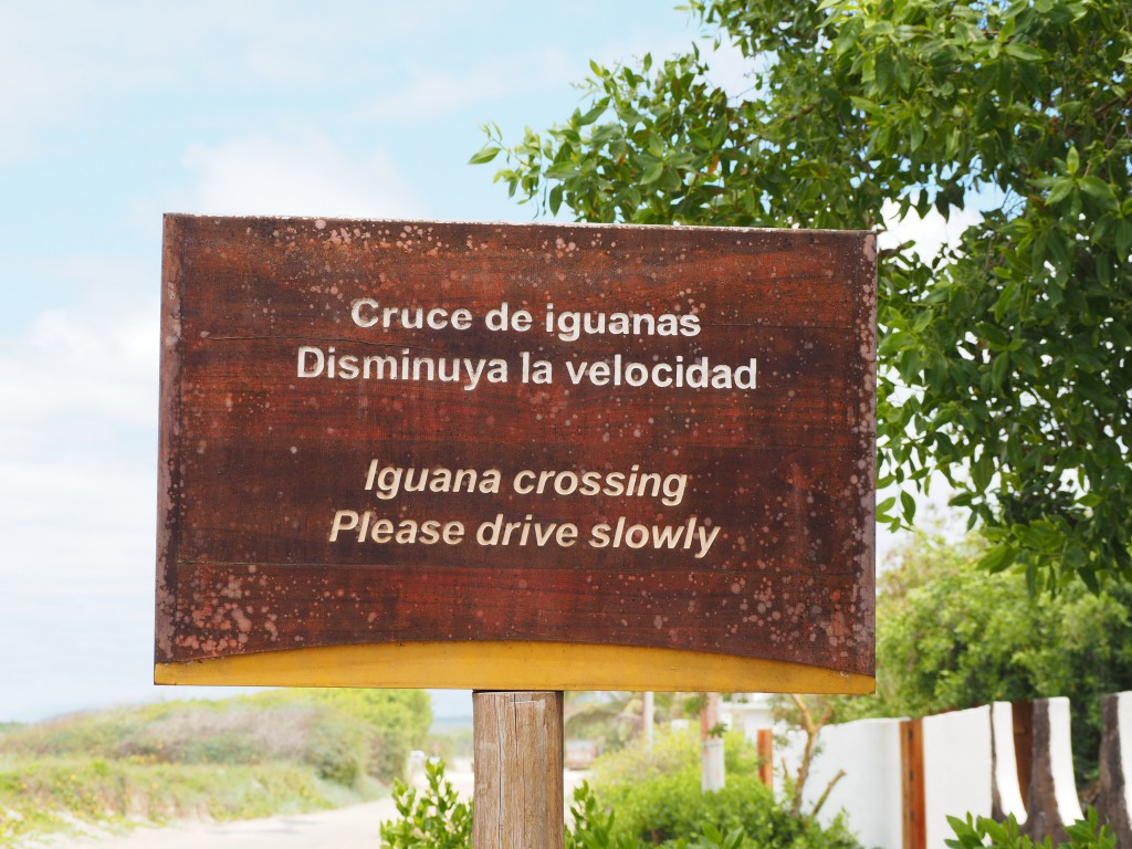 Signs like this only exist in the Galapagos...